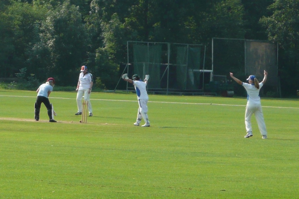 Estonia bowled by Netherlands Select